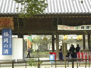 2011.11 福岡 133.jpg