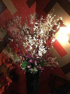 komoriku sakura.f.jpg